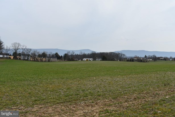 Land - EDINBURG, VA (photo 4)