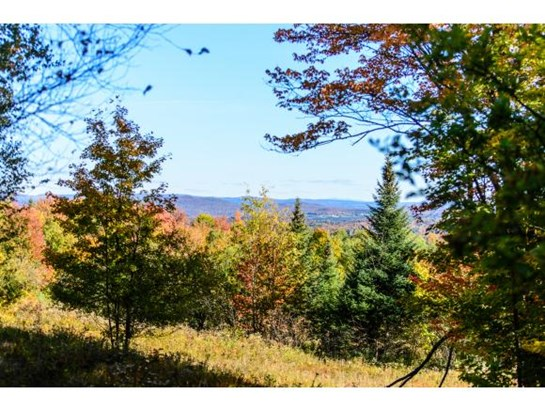1531 Diggins Road, Hyde Park, VT - USA (photo 1)