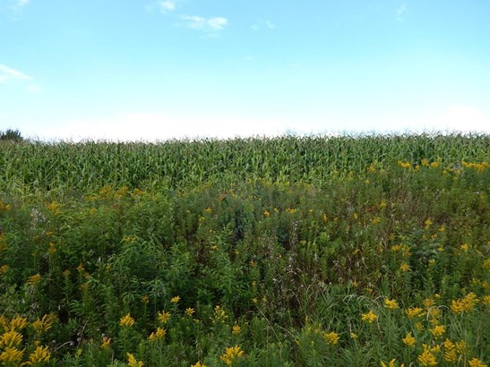 Lot 3 11th St, Prairie Farm, WI - USA (photo 2)