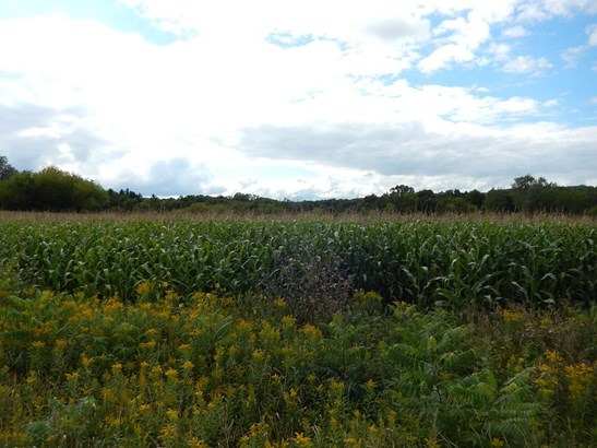 Lot 3 11th St, Prairie Farm, WI - USA (photo 3)