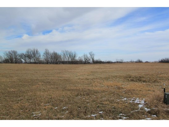 Lot 1 257th Avenue, Wendell, MN - USA (photo 3)