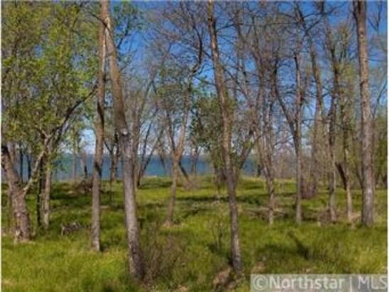 30211 Four Winds Drive, Battle Lake, MN - USA (photo 5)