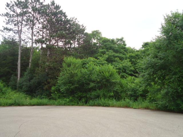 Lot 38 Charland Drive, Pepin, WI - USA (photo 1)