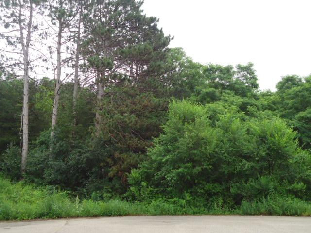 Lot 38 Charland Drive, Pepin, WI - USA (photo 2)