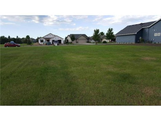 1214 Cypress Drive W, Annandale, MN - USA (photo 2)