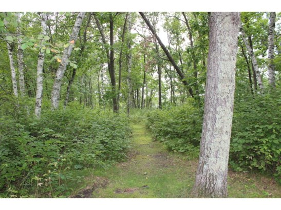 909 Shady Hollow Road, Pillager, MN - USA (photo 4)
