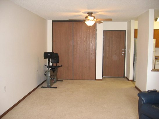 221 Grand Avenue W #301, S St. Paul, MN - USA (photo 5)