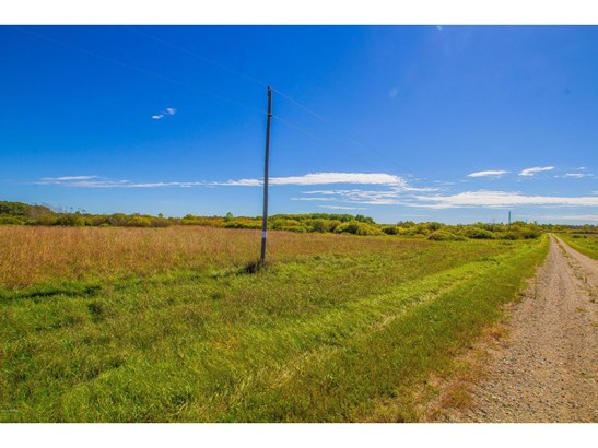 1 Co Road 13 Ne, Carlos, MN - USA (photo 4)