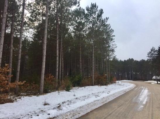 Lot 6 Blk 1 Plantation Pass, Pillager, MN - USA (photo 3)