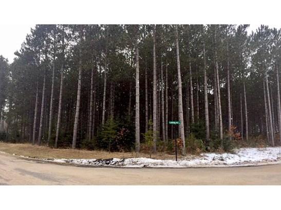 Lot 6 Blk 1 Plantation Pass, Pillager, MN - USA (photo 4)