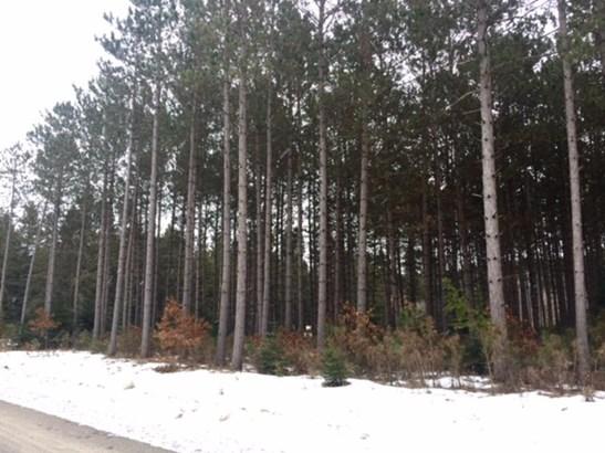Lot 6 Blk 1 Plantation Pass, Pillager, MN - USA (photo 5)
