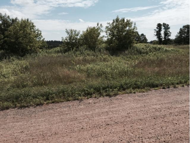Xxx Parcel 2 Grand Goose Road, Milaca, MN - USA (photo 1)