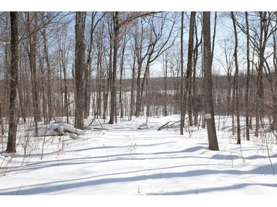0 Hickory Ridge Trail, Birchwood, WI - USA (photo 1)