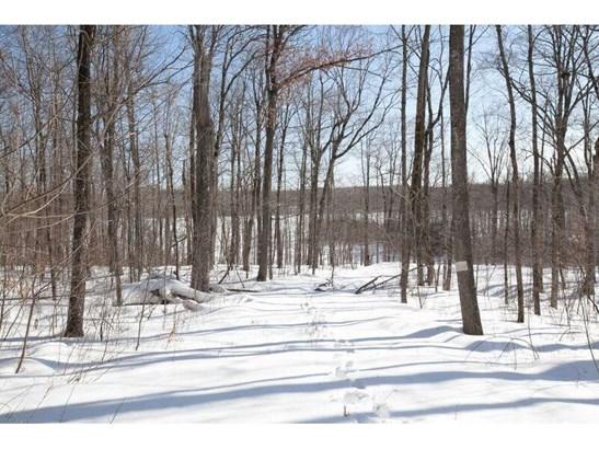 0 Hickory Ridge Trail, Birchwood, WI - USA (photo 3)