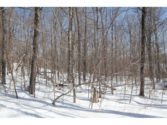 0 Hickory Ridge Trail, Birchwood, WI - USA (photo 4)