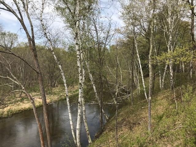 Lot 1&2 Daggett Creek Drive, Fifty Lakes, MN - USA (photo 4)