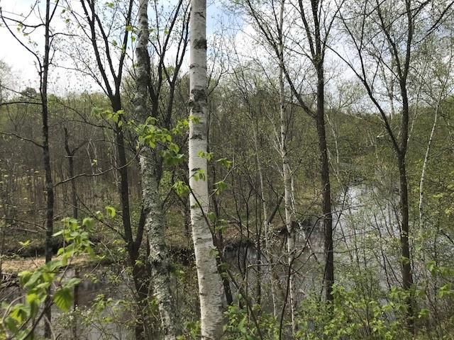 Lot 1&2 Daggett Creek Drive, Fifty Lakes, MN - USA (photo 5)