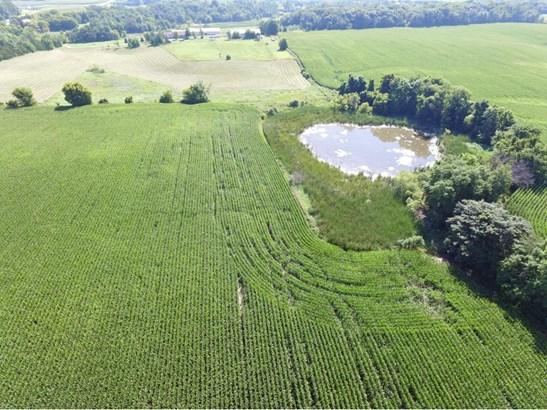 Xxxx Greenfield, Greenfield, MN - USA (photo 3)
