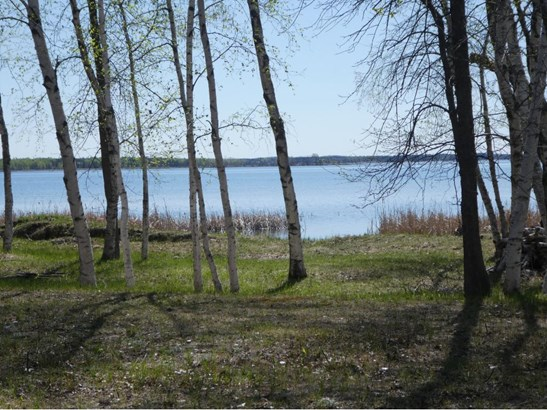 Tract B Pelican Trail, Breezy Point, MN - USA (photo 3)