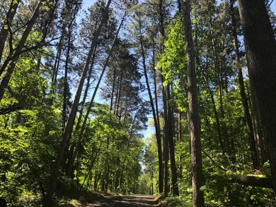 Xxxx Camp Lincoln Road, Nisswa, MN - USA (photo 5)