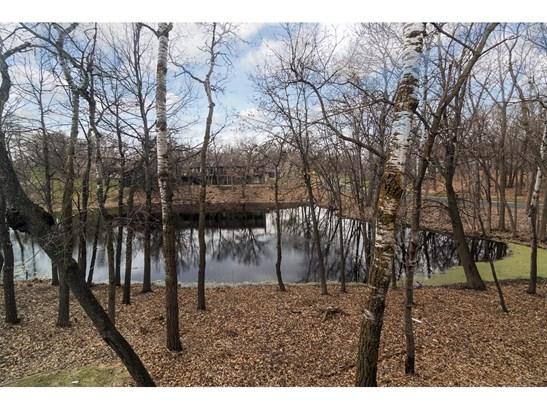 171 River Woods Lane, Burnsville, MN - USA (photo 5)