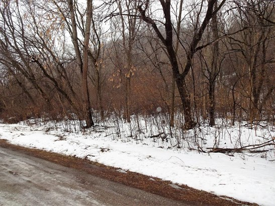 Lot 8 185th Avenue, Hager City, WI - USA (photo 3)