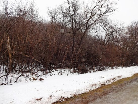 Lot 8 185th Avenue, Hager City, WI - USA (photo 4)