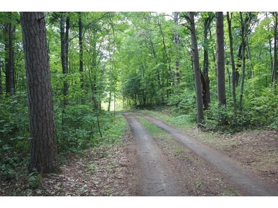 3857 Lone Wolf Trail Road Ne, Longville, MN - USA (photo 5)