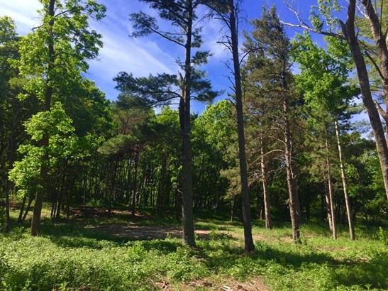 Lot 104-105 County Road 4, Breezy Point, MN - USA (photo 4)
