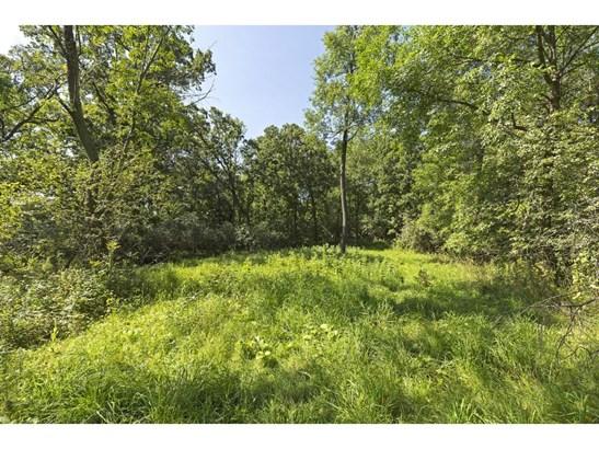 9 Preserve Trail, North Oaks, MN - USA (photo 5)