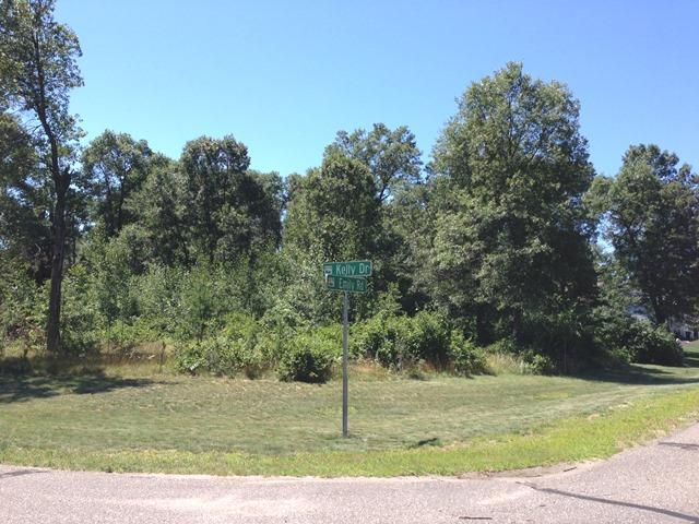 Lot 4 Emily Road, Baxter, MN - USA (photo 2)
