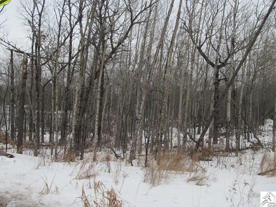 Xxxx Maple Grove Rd, Duluth, MN - USA (photo 3)