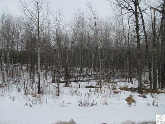 Xxxx Maple Grove Rd, Duluth, MN - USA (photo 4)
