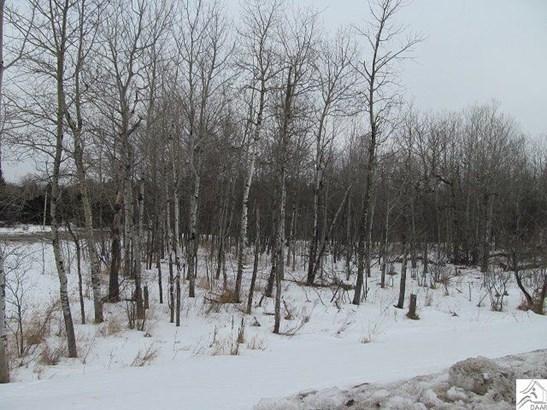 Xxxx Maple Grove Rd, Duluth, MN - USA (photo 5)