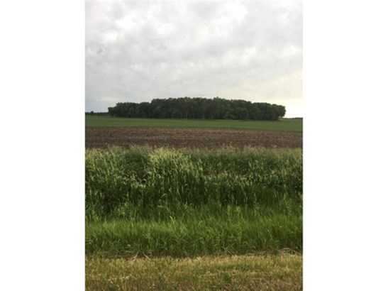 Lot 2 Clementa Avenue Sw, Montrose, MN - USA (photo 1)