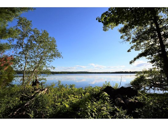 10311 Forest Lane Sw, Pillager, MN - USA (photo 5)