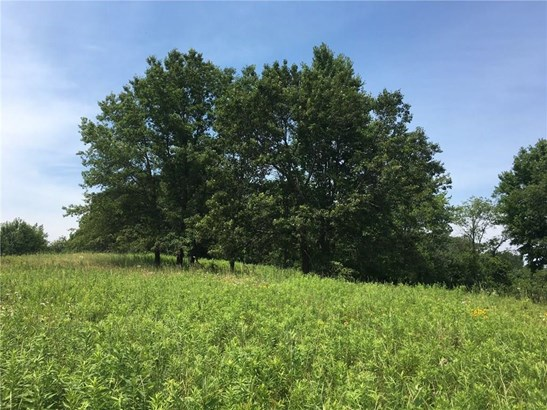 0 10th 35+/- Acres Avenue, Cadott, WI - USA (photo 1)