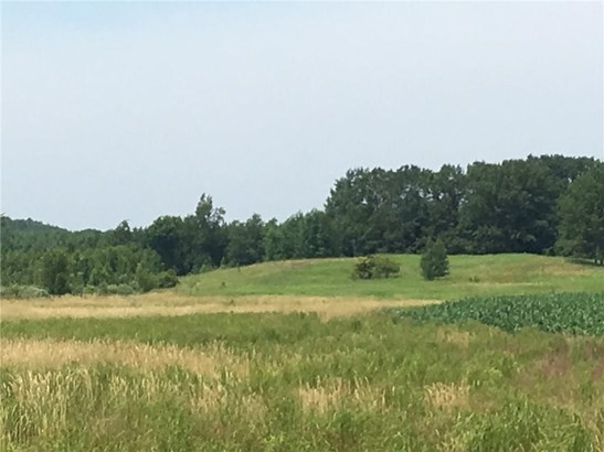 0 10th 35+/- Acres Avenue, Cadott, WI - USA (photo 4)