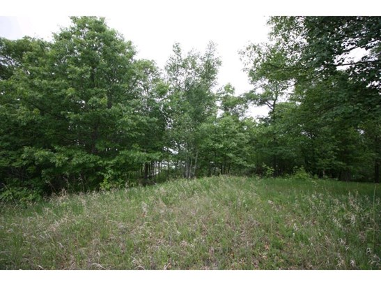 Lot 1 Blk 1 Birch Grove Court Nw, Hackensack, MN - USA (photo 3)