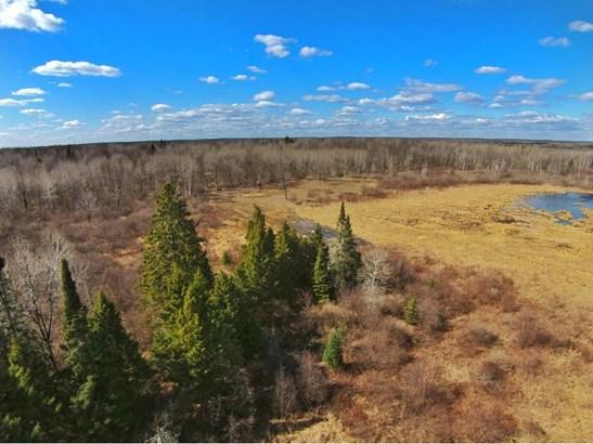 Xxx Scout Trail, Ojibwa, WI - USA (photo 1)