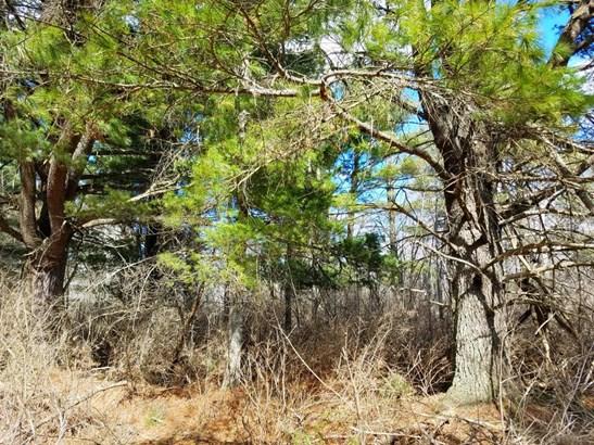 Xxx Scout Trail, Ojibwa, WI - USA (photo 5)