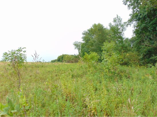 53 Acres 222nd Street, Baldwin, WI - USA (photo 1)