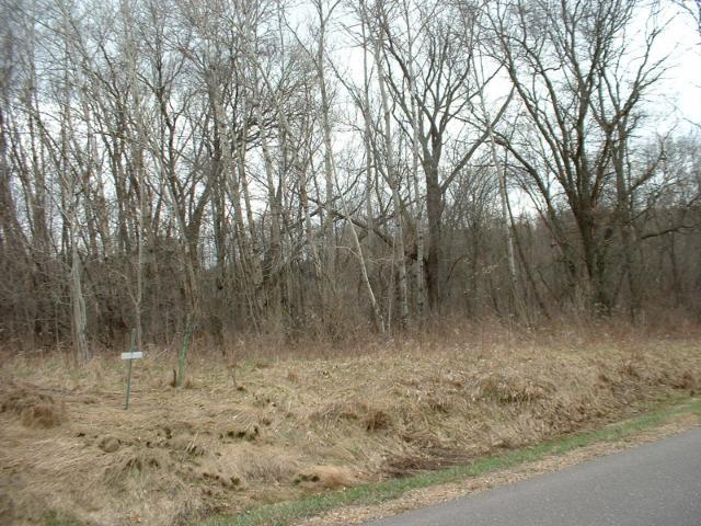 1359 Evergreen Drive, River Falls, WI - USA (photo 4)
