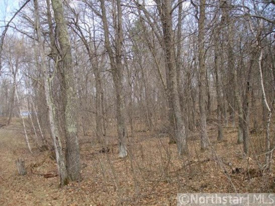 Lot 2 Northwoods Lane, Breezy Point, MN - USA (photo 4)