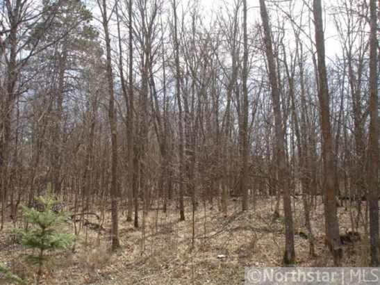 Lot 2 Northwoods Lane, Breezy Point, MN - USA (photo 5)