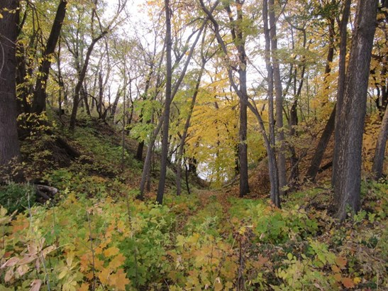 15590 Dayton River Road, Dayton, MN - USA (photo 4)