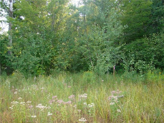 Lot 16 Fishtrap Lake Road, Winter, WI - USA (photo 4)
