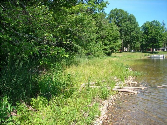 Lot 16 Fishtrap Lake Road, Winter, WI - USA (photo 5)