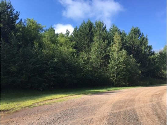 Lot 6 192nd Street, Eureka Center, WI - USA (photo 1)