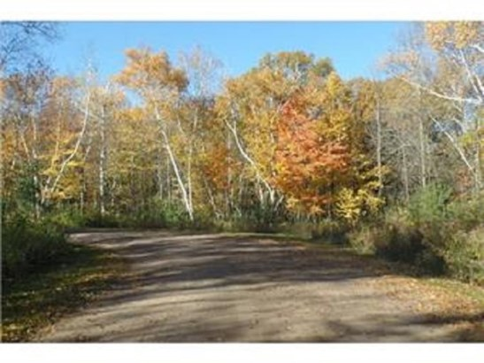 Lot 6 192nd Street, Eureka Center, WI - USA (photo 3)